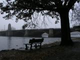 Esplanade Fog