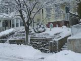 Winter in East Somerville