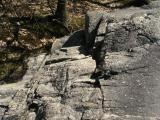 Atop the Rock