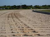 Crawlerway Tracks
