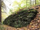 Rocks in Autumn