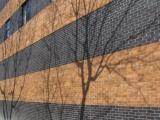 Shadows on Brickwork