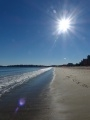 Beach under Bright Sun