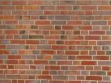 Variety of Bricks