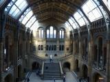 Museum Sunlight