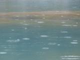Raindrops in a Geyser Basin