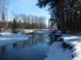 Looking Glass Riverbank in Winter