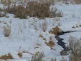 Landscape of Winter Stream