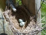 Nest in a Gate