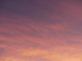 Luminous Pink Clouds